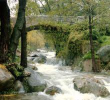 Piedralaves. Puente Romano