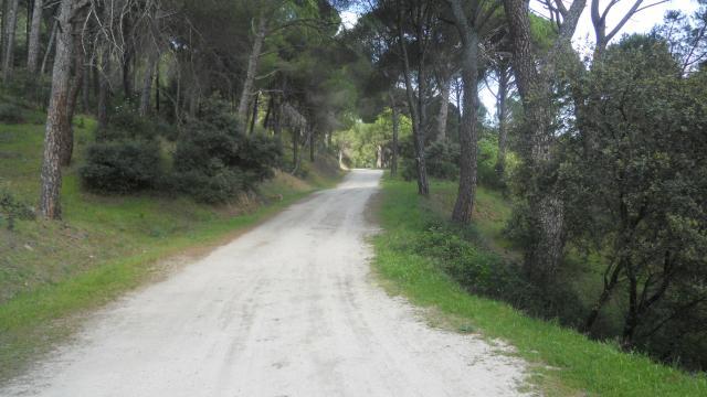 Camino de Piotea, Piedralaves