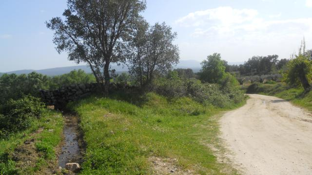 Camino del Rio Piedralaves