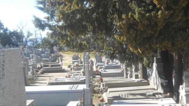 Cementerio de Piedralaves